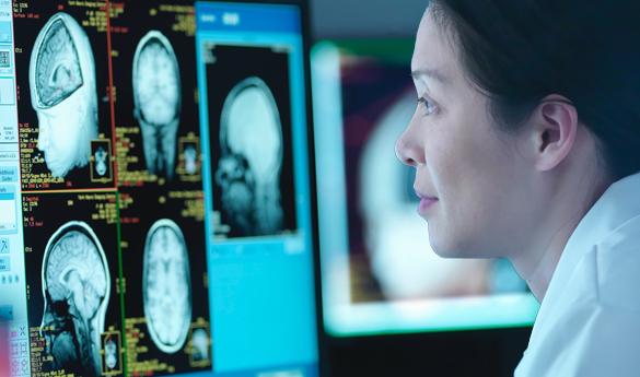 DDN、ハーバード大学の画期的な行動神経科学研究の推進に貢献  電子顕微鏡の高解像度画像の収集時間を短縮