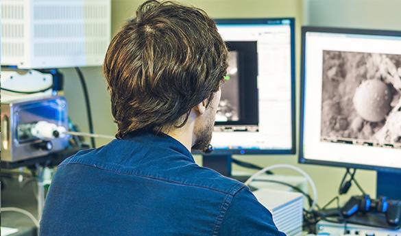 DDNストレージを組み込んだ新テクノロジープラットフォームで、超解像顕微鏡データのリアルタイム解析が可能に