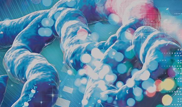 DDNとParabricks、ゲノム解析向けGPUアクセラレーションで画期的なソリューションを発表
